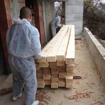 Bios Wood Ignifug 10kg